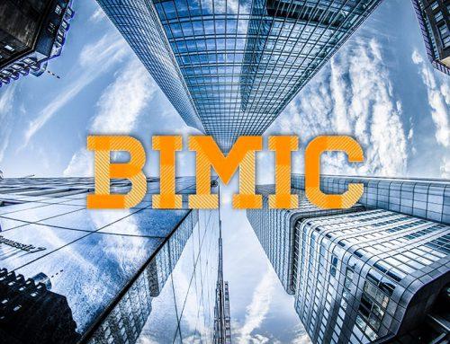 Luis de Pereda participa en BIMIC 2019
